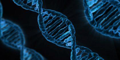Ewiges Leben und notwendiger Tod: Eine biologische Betrachtung des Lebenszyklus