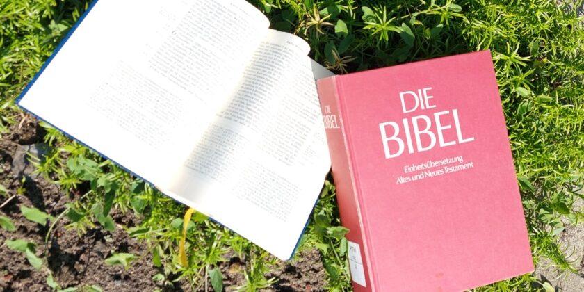 Biblischer Studientag: Wie wörtlich ist die Bibel zu verstehen?